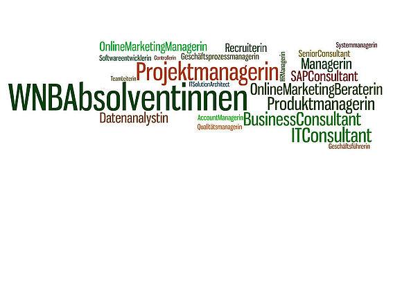 Job description and career perspectives (I12927-1)