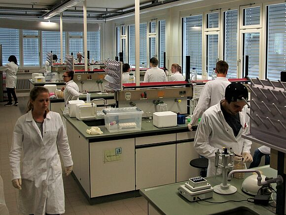 Labor Molekularbiologie (I16434-2)
