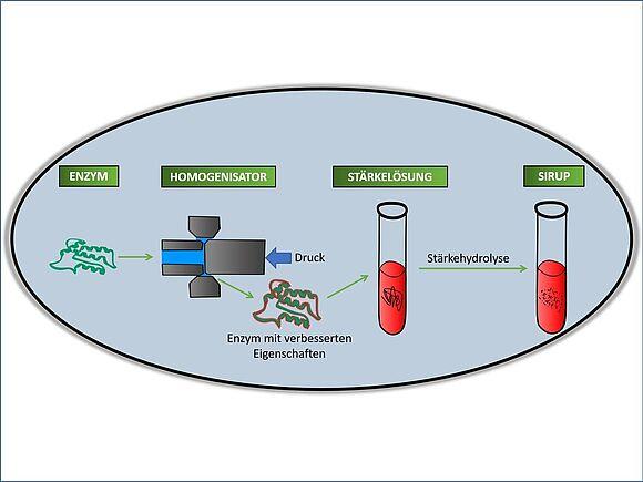 Studentische Projekte Nachhaltige Bioprozesstechnik (I24158-1)