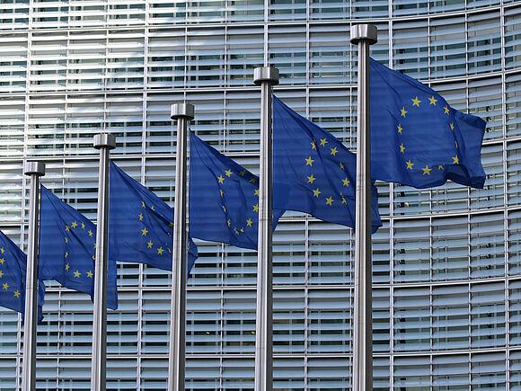 Standpunktanalyse zum geplanten EU-Plattformgrundgesetz / Digital Services Act