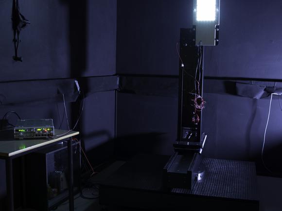 Lighting Technology (I14055-1)