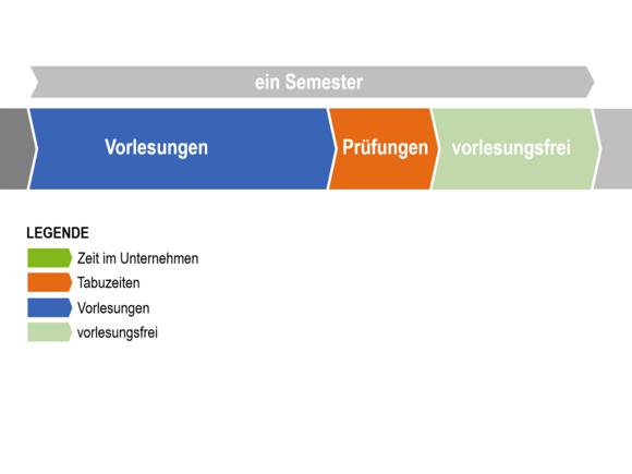 Ablauf des Studienbegleitenden Traineeprogramms (I22225-1)