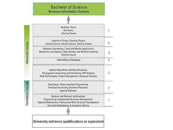 Programme structure & content