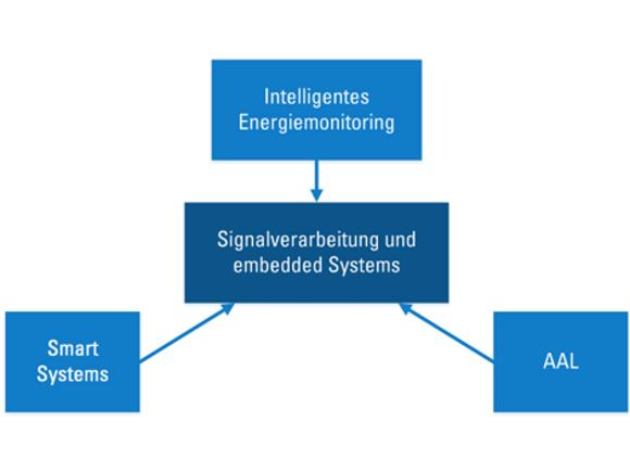 Forschungsfelder (I2626-1)