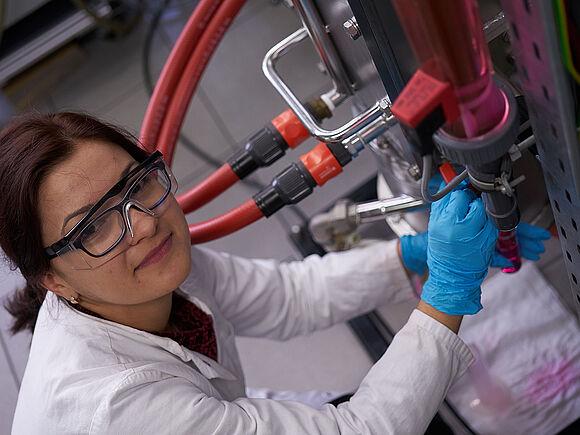 Studentische Projekte Nachhaltige Bioprozesstechnik (I22201-1)