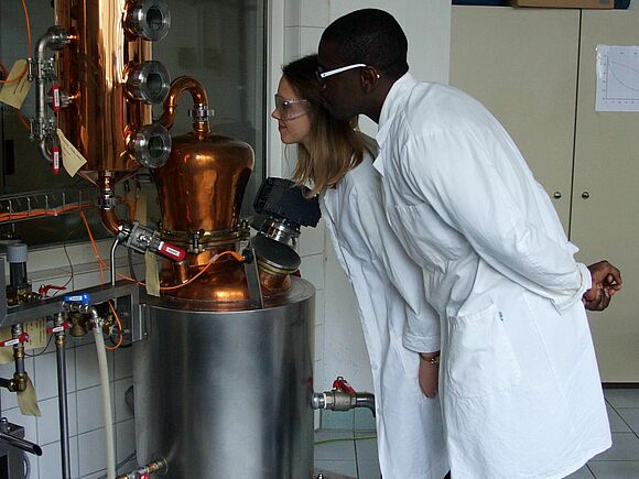 HFU distillery as model process