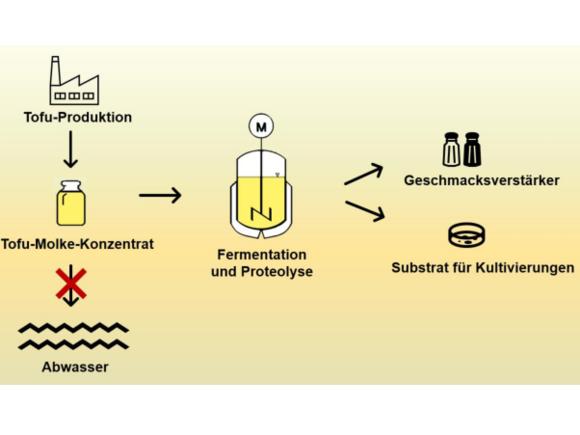 Studentische Projekte Nachhaltige Bioprozesstechnik (I27929-1)