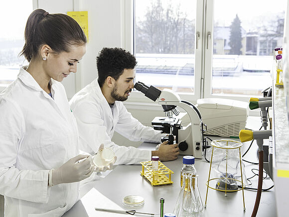 Labor Molekularbiologie (I16434-1)