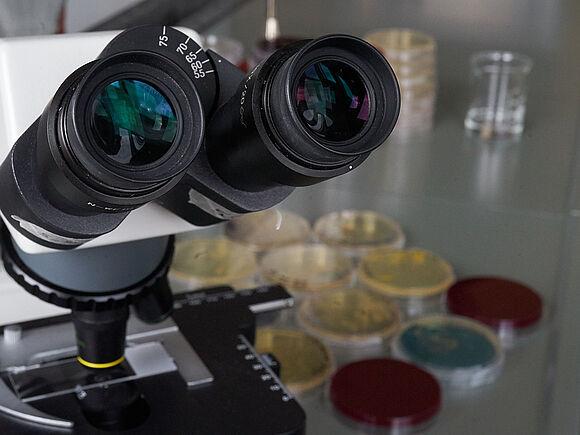 Biologische Prozesse (I22432-3)
