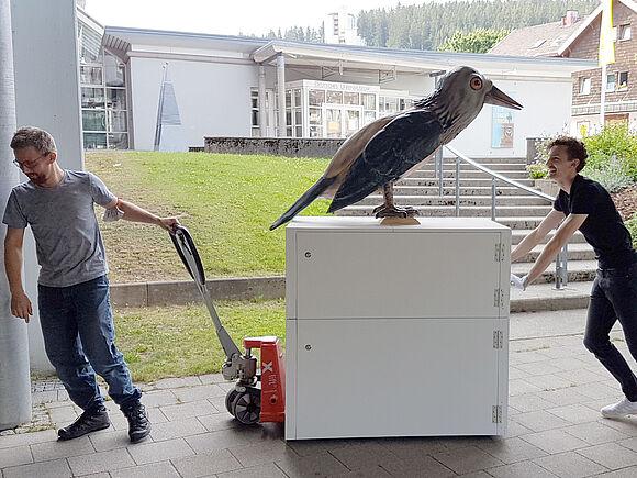 Schräger Riesenvogel im Video