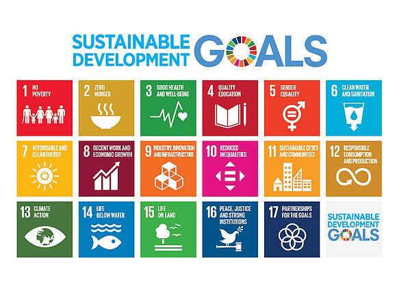 Sustainability (I19255-1)