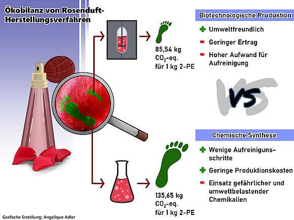 Studentische Projekte Nachhaltige Bioprozesstechnik (I24122-1)
